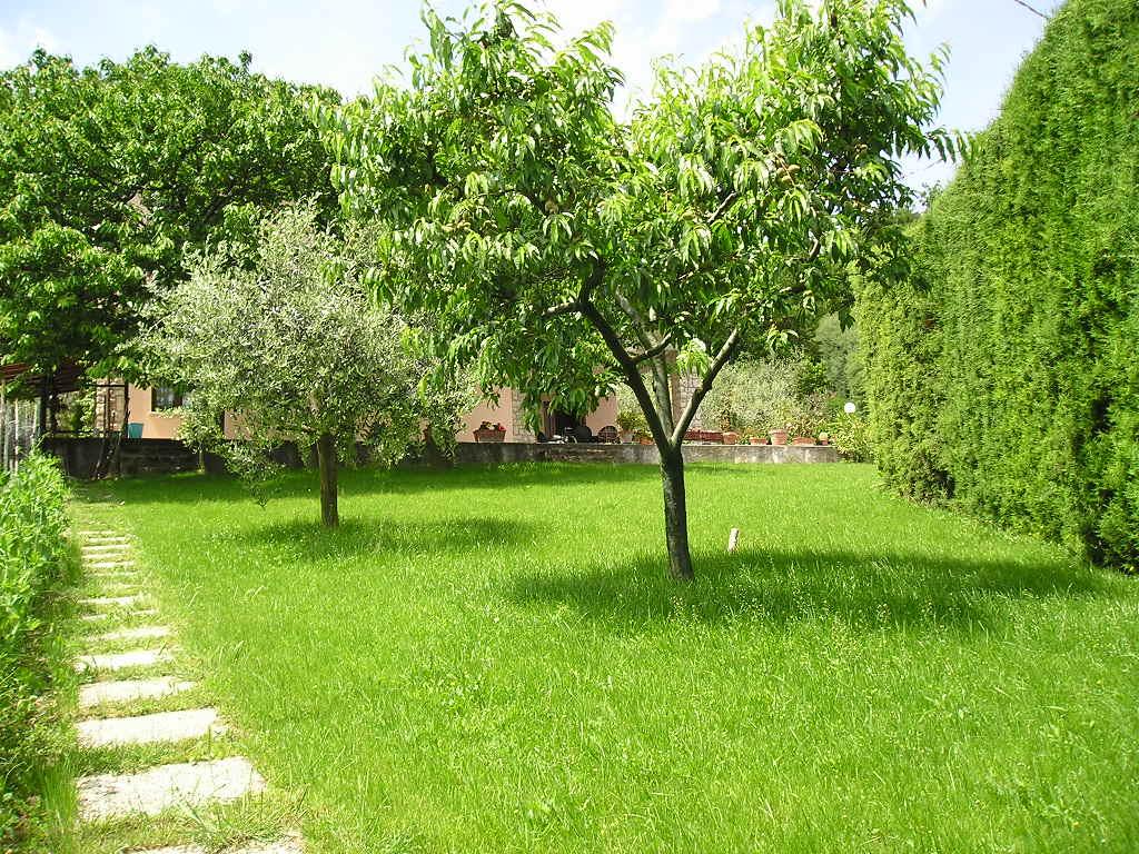 033 v villa montenegro 2 appartamenti in villa con - Giardino condominiale ...