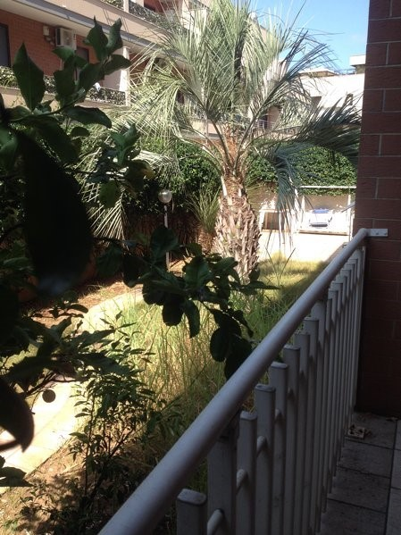 AAM 665 Appartamento Grande con Giardino/Big 4 bedroom Home with gardens